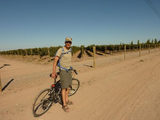 Bike & Wine tour!